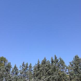 Ore 13.50 sereno con vento 11kmh