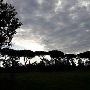 Fotosegnalazione di Roma monte sacro