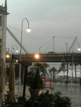 Expo genova
