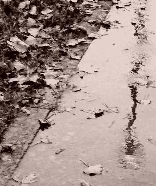 Riflesso nella pioggia