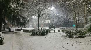 Prima neve..
