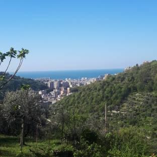 Genova dalle alture