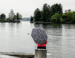 Guardando la pioggia