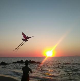 Il volo di un aquilone verso il tramonto