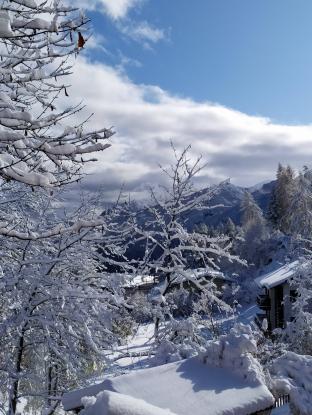 Neve il 13 novembre