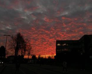 L'alba al mazz