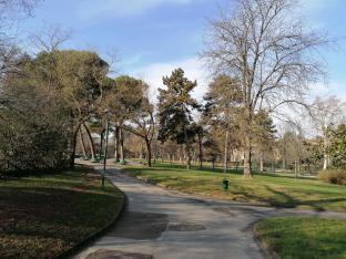 Giardini margherita inverno 6