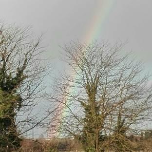 Dopo lla pioggia l'arcobaleno