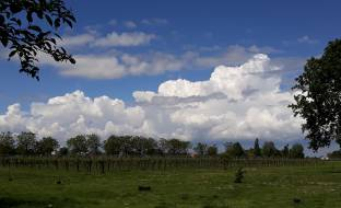 Nuvoloni all'orizzonte