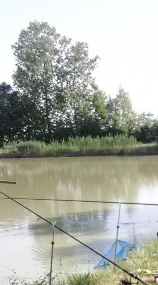 Levatesi a pesca