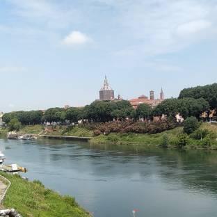 Pavia lungoticino