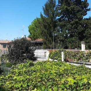Fotosegnalazione di Ferrara