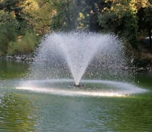 Fontanella cristallizzata nel laghetto.