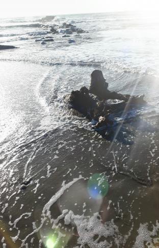 Il mare di inverno
