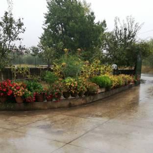 Pioggia forte e freddo a Tecchiena