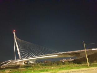 Ponte di calatrava by g.congi