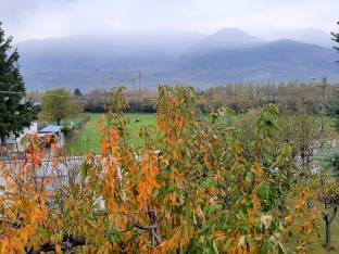 Autunno in lockdown