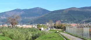 Vista monte morello