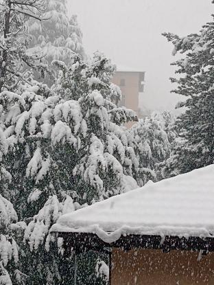 Varese colle montalbano 10cm neve