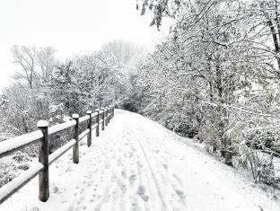 Neve del 2 dicembre 2020