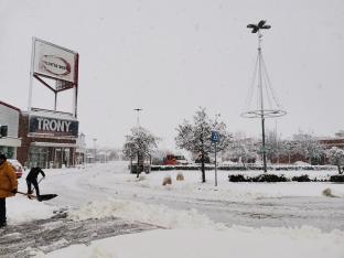 Neve forte