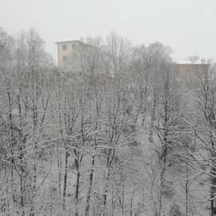 Un assaggio d'inverno