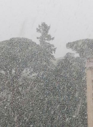 Finalmente neve ad avellino
