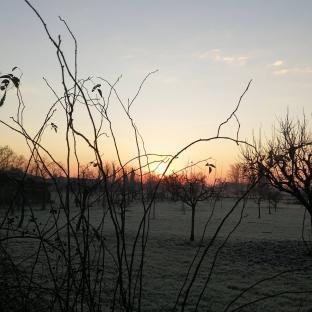 Il silenzio dell alba