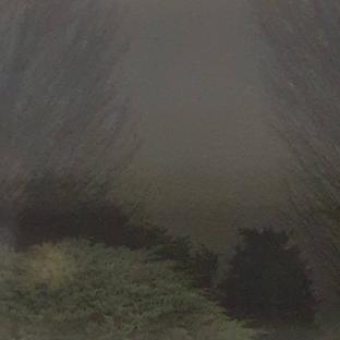 Intense fog