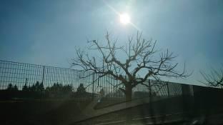 17 gradi al sole