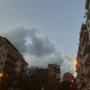 Fotosegnalazione di Palermo