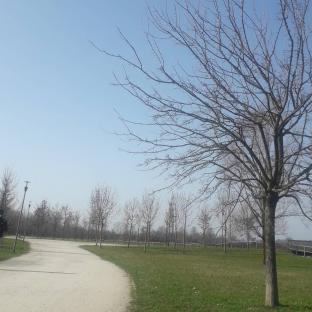 Parco trucca
