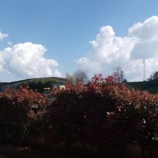 Roncola di Treviolo