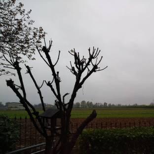 Roata canale frazione di Cuneo