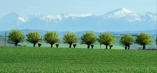 25 aprile 2021 colline maceratesi