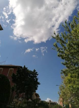 Una bella giornata di maggio