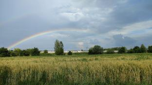 Bi arcobaleno a pontelagoscuro