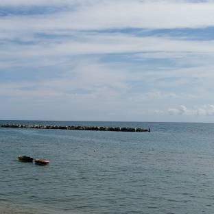 Marina palmense