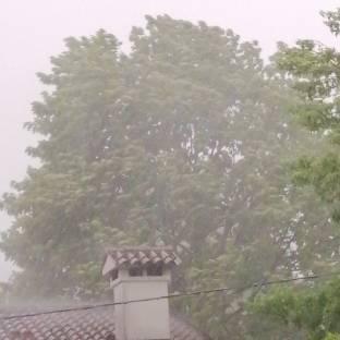 Pioggia e vento forte