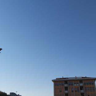 Fotosegnalazione di Chievo