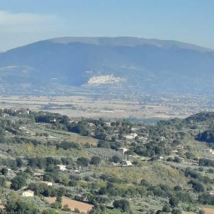Perugiaassisi