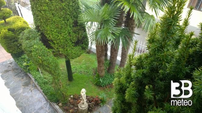Il mio giardino foto gallery « b meteo
