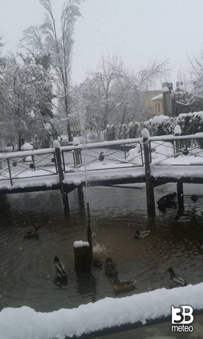 Laghetto dei giardini con neve foto gallery 3b meteo for Laghetto i giardini