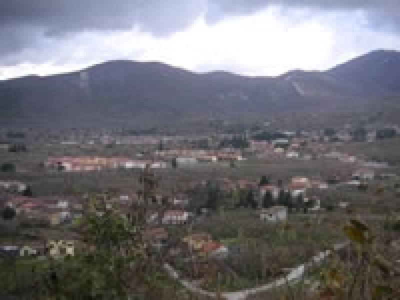 Forino
