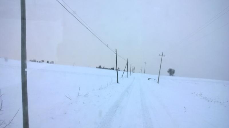nevicata gennaio 17