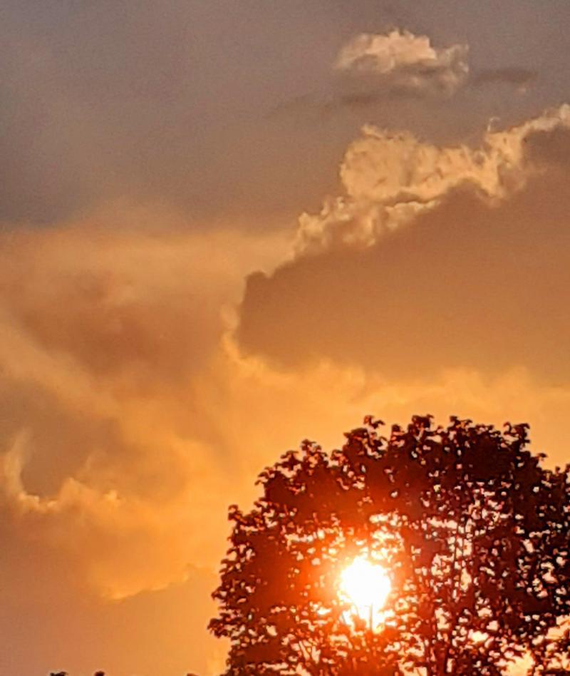 Bel tramonto ad area verde