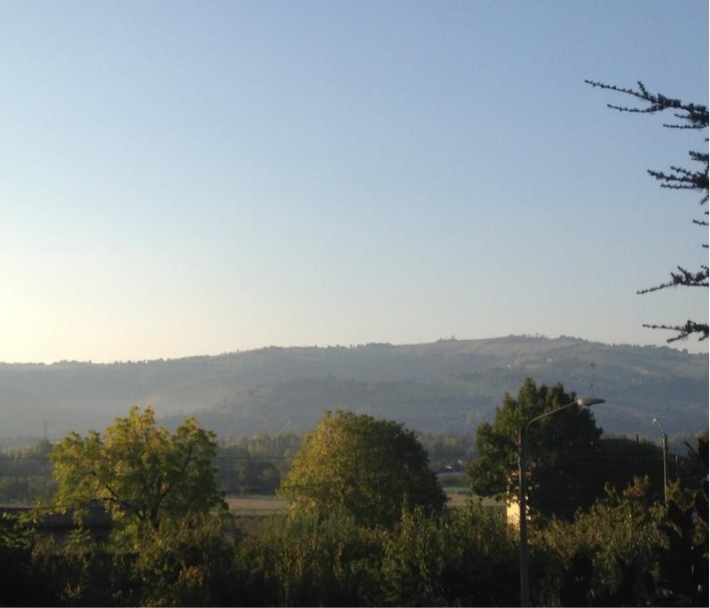 Fotosegnalazione di Vignola