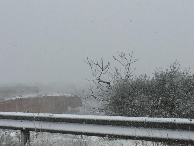 Nevicata 06-01-2017