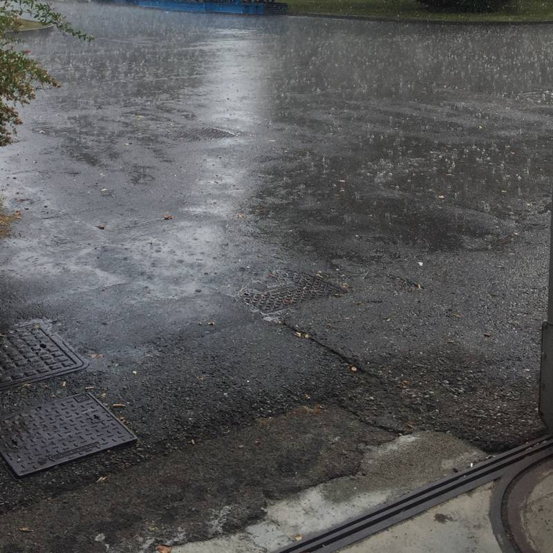 Pioggia 1820