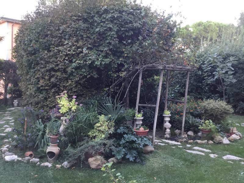 Scorcio del mio giardino 71017